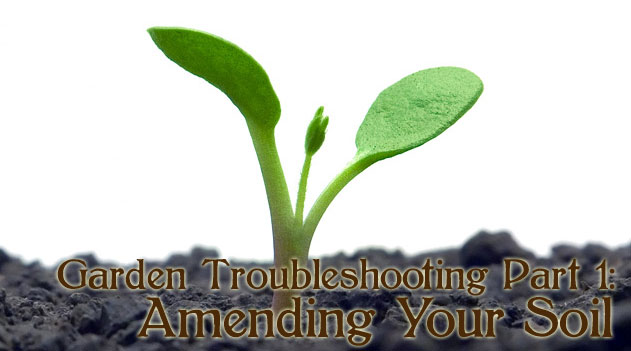 Garden Troubleshooting Part 1: Amending Your Soil